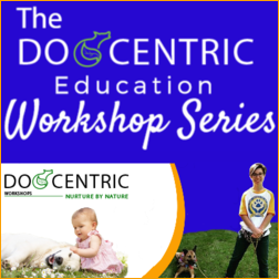 Dogcentric Workshops